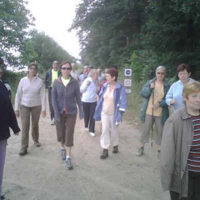 marche, juin 2011,  foret de Vouvant